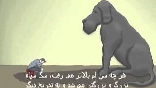 سگ سیاه - انیمیشن سازمان ملل با موضوع افسردگی