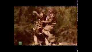 Shookhi kardam- Khoshoonat اولین خشونت بشر